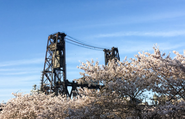 Portland, Steele Bridge, Steele Bridge Portland, Spring in Portland